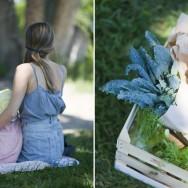 Arstiderne_picnic