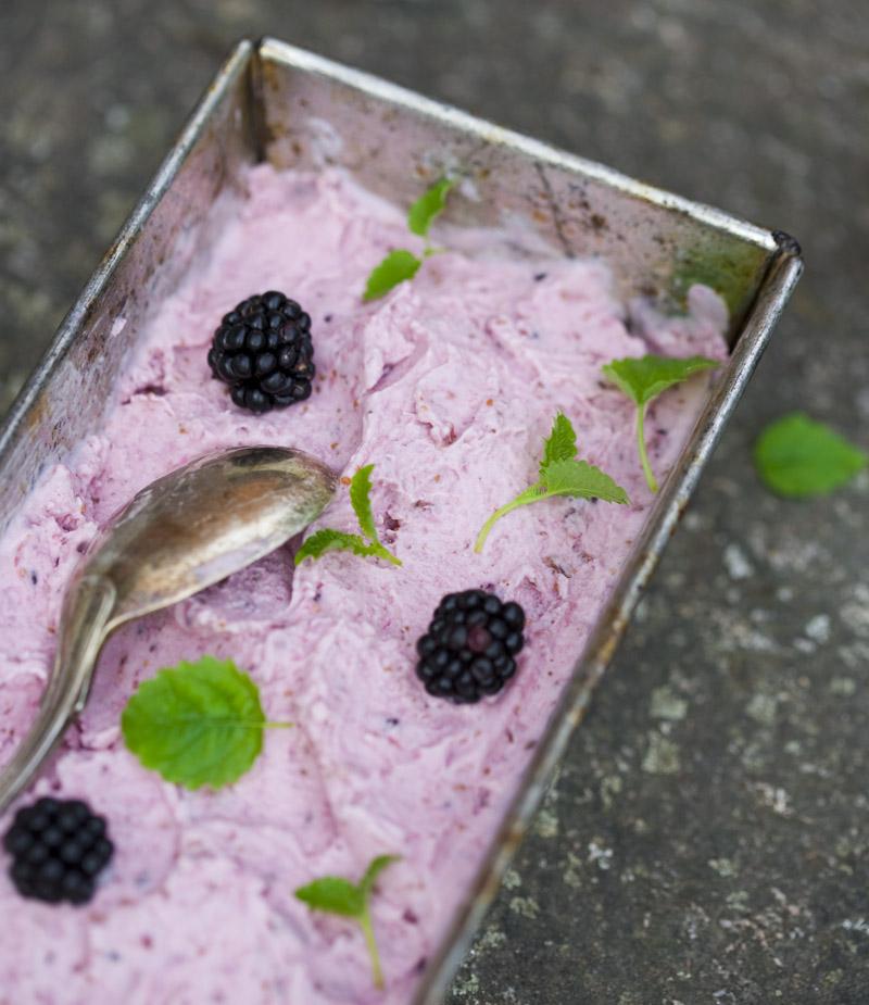 Fig, Coconut and Blackberry Ice Cream   Vegan Ice Cream Recipes   Homemade Recipes