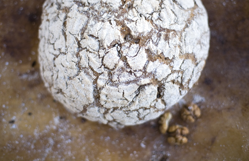 Walnut & Rye Sourdough Bread