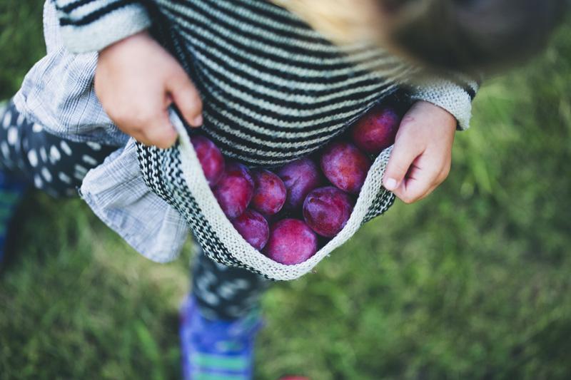 Autumn_plum_stick_bread_01