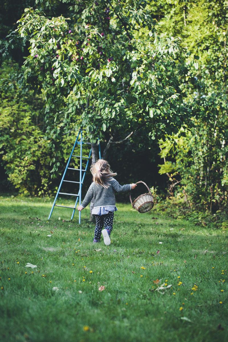 Autumn_plum_stick_bread_03