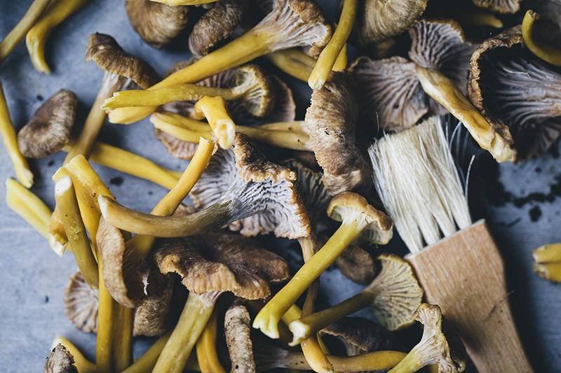 Kale_mushroom_tortilla_3
